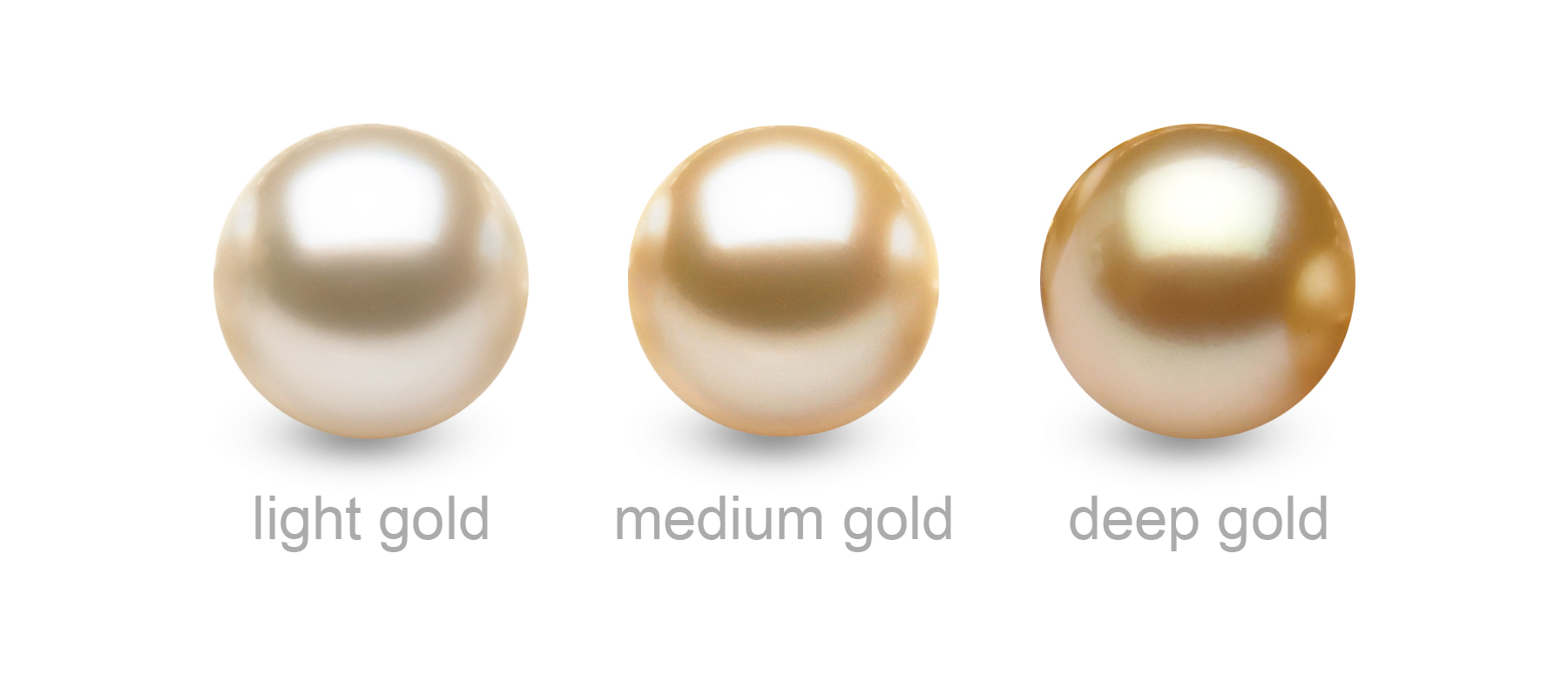 The Most Common Golden Pearl Colors