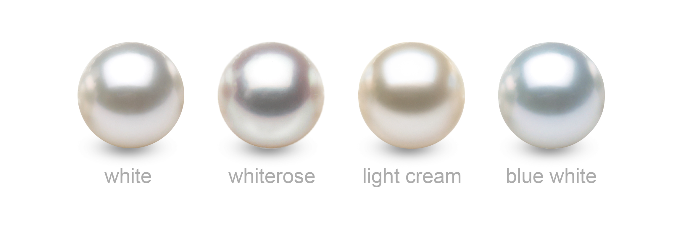 The Most Common South Sea Pearl Colors